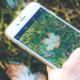 Hösten är digital